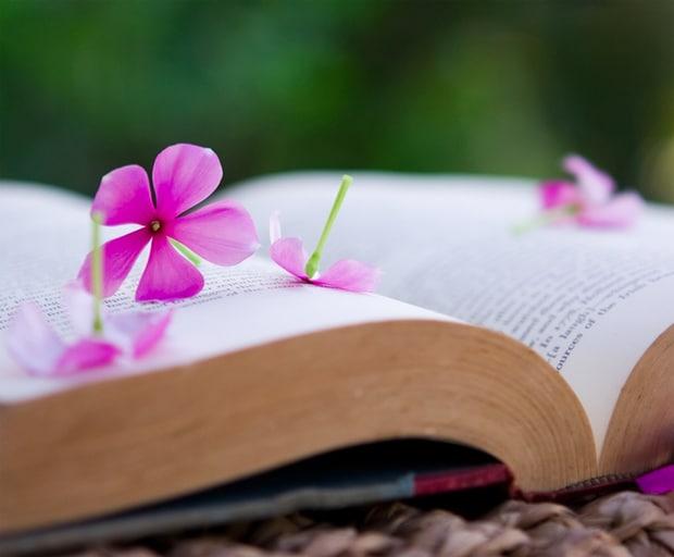 springbooks