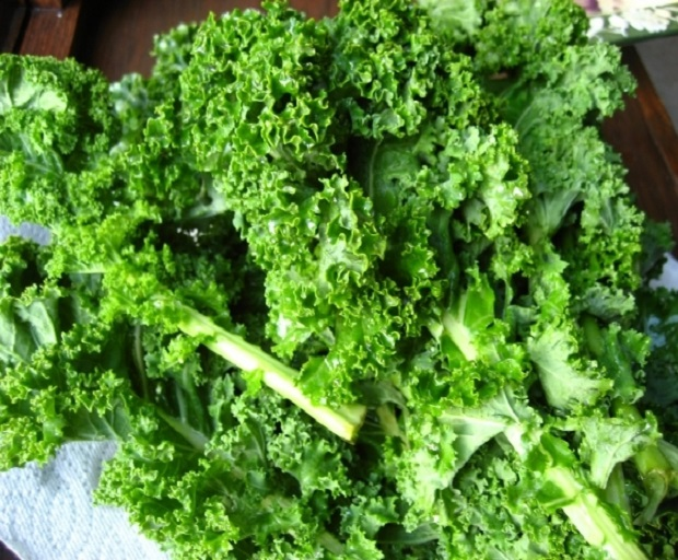borecole, kale, kale recipes, superfoods, what is kale