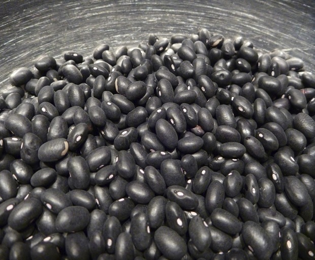 Why Are Black Beans One Of The Healthiest Foods On The Planet?