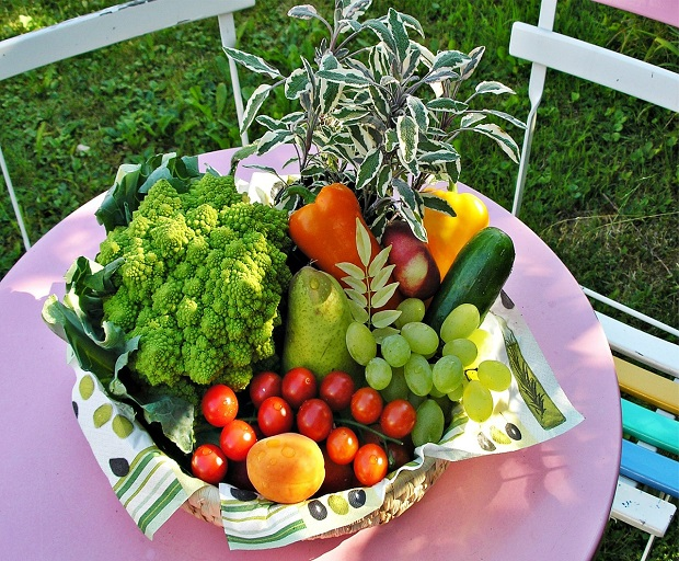 vegetarian pregnancy diet, vegan pregnancy diet, healthy pregnancy diet