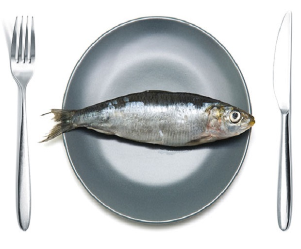 Why Is Mercury So Dangerous To Consume When Pregnant?