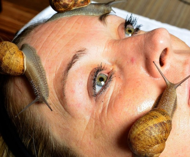 Snail Facial Mask - Would You Try It?