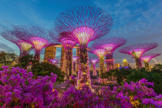 Why should travel to Singapore in 2015