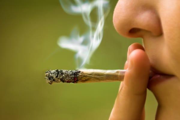 drugs, war on drugs, marijuana, cannabis, epilepsy, illegal