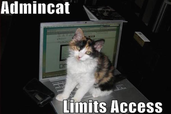 funny-pictures-cat-limits-your-computer-access