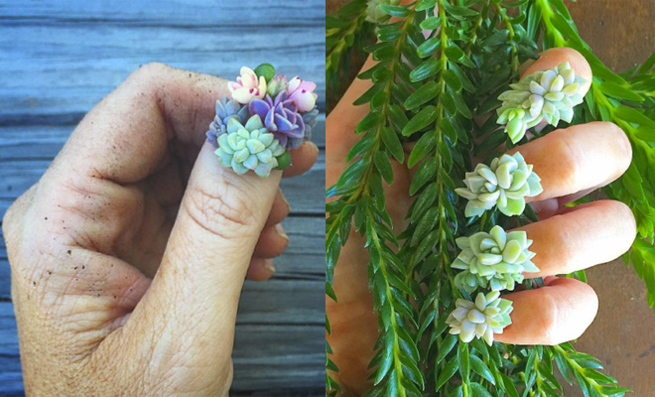 Succulent Nails Are The Most Eco-Friendly Nail Trend You've Ever Seen