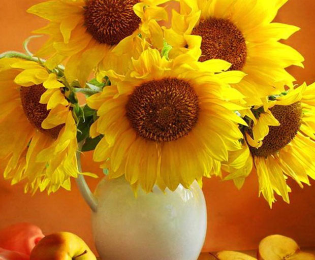 flowers, sunflowers, brighten up, office decoration, homewares, interior design