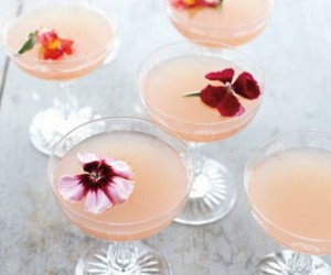 cocktails, recipes, drinks, easy recipes, beverages