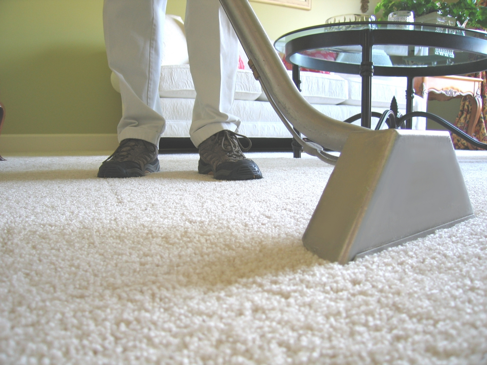 carpet cleaning, entertaining