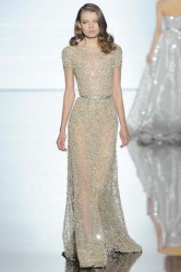 Zuhair Murad Fashion Runway Dress