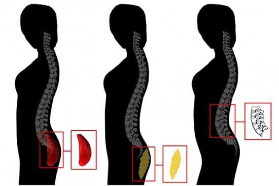 Big Butt, Female Behind, Beauty, Kim Kardashian, Study, Womens Health