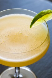 7 Tasty Martini Recipes