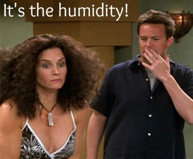 Beat The Frizz Hairstyles For Humid Weather