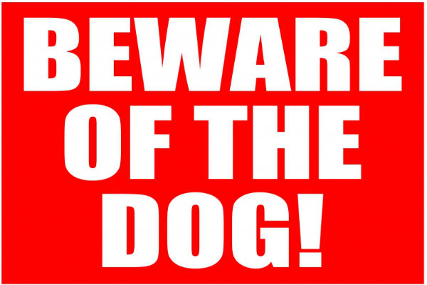 animals, pets, kids' safety, dog attacks